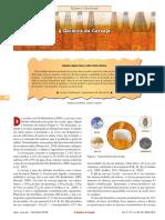 quimica cerveja artigo.pdf