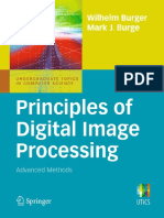 Wilhelm Burger, Mark J. Burge - Principles of Digital Image Processing. Advanced Methods