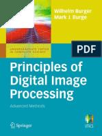 Image Processing Using Matlab Gonzalez Pdf