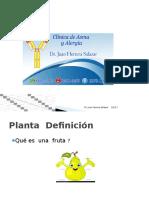 Anatomía Plantas (morfología )
