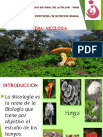 Expo Microbiologia Teoria