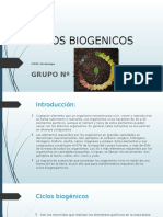 DIAPO CICLOS BIOGENICOS