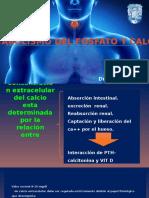 Concentración Extracelular Del calcio