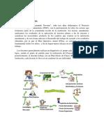 ENTRADA 9.pdf