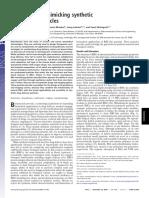 Ana-2.pdf