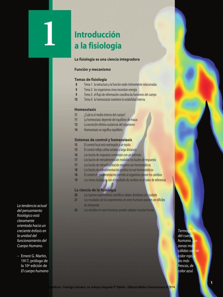 Fantástico Anatomía Y Fisiología Humana Marieb 10ª Edición Clave De ...