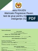 Testul Raven 2f
