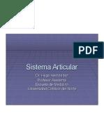 Sistema Articular1