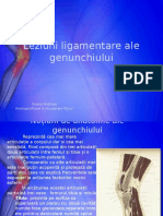 Leziuni Ligamentare Ale Genunchiului