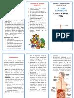 TRIPTICO EL INTESITNO DELGADO.docx