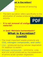 excrection 1
