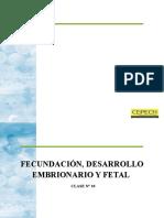 Biologia - Fecundacin Desarrollo Embrionario y Fetal Clase 10