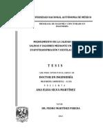 Mejoramiento de La Calidad de Aguas Salinas y Salobres Mediante Un Sistema de Evapotranspiración y Destilación Solar