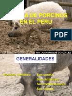 Produccion de Porcinos