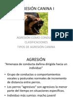 Agresion Canina i