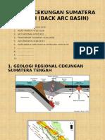 Geologi Cekungan Sumatera Tengah ( Back Arc Basin