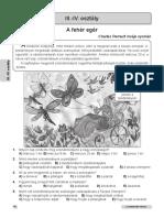 Pov Cang cl III-IV Maghiara.pdf