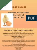 Piaţa ouălor