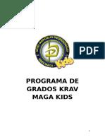 Programa de Grados Krav Maga Kids
