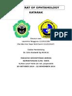 Referat Katani.doc