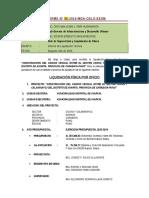 1 Informe Final