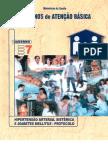 Caderno de Atenção Básica - Hipertensão e Diabetes