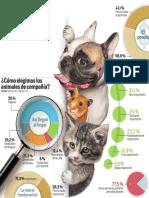 Animales Compania Eleccion