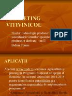 Marketing Vitivinicol Bt