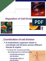 Mitosis Regulation 2010