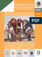 Alcoholismo Comunidades Indigenas