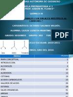 Grupos Funcionales Con Enlaces Múltiples Al Carbono