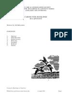 ducks 2.pdf