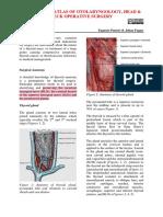 Thyroidectomy Vula Atlas