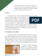 II 18 Relatorio-tecnico 3 PTDSS Vinicius