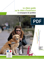 Chien Guide 16p