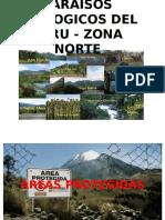Areas Protegidas-zona Norte