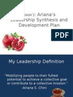 final presentation--leadership syntesis