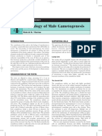 physiology of male gametogenesis.pdf