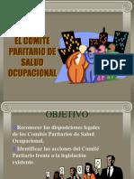 Capacitación COPASO