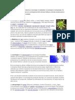Ciencias Auxiliares de Psicologia, Escuelas Economicas