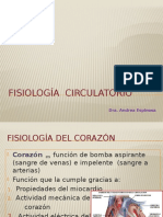 FISIOLOGÍA Circulatorio