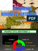 14   Procesamiento minimo hort. 2010.pdf
