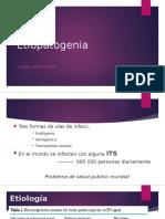 EPI Etiopatogenia