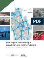 TransporteNoMotorizado GIZ SUTP NMT Pedestrian Cycling Network Windhoek 2016