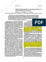 Levels of Acid-Soluble Polyphosphate in Growing Cultures of Sc