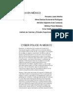CIBERPOLICIA EN MEXICO
