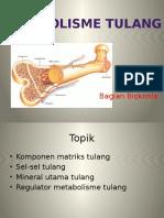 metabolisme tulang