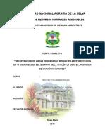 proyecto de reforestacion de suelos degradados.docx