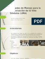 Unidades de Manejo Para La Conservación de La Vida Silvestre -(UMA)