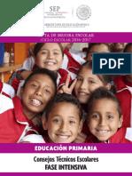 Guia_Primaria_FaseIntensivaCTE_2016-2017 1.pdf